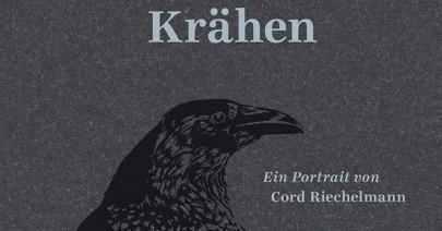 kraehen_featured