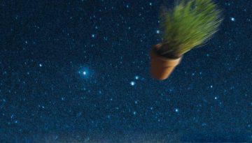 stein_komet_featured