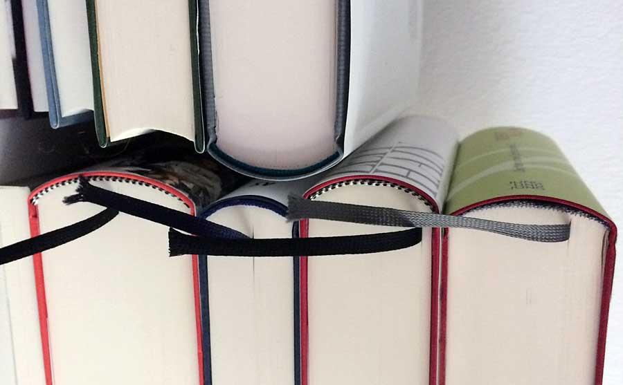 Reuß - Die perfekte Lesemaschine